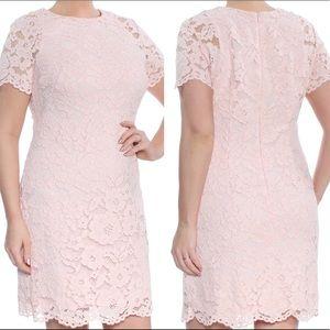 ✨NEW✨ Lauren Ralph Lauren Women's Pink Lace Dress